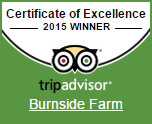Winner of Certificate of Excellence for 2015!